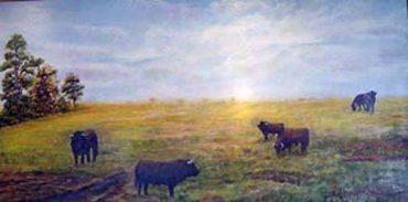 Toros en el prado